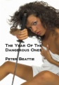 Year Of The Dangerous Ones book cover