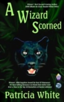 A Wizard Scorned by Patricia White book cover
