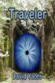 Traveler book cover