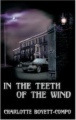 In the Teeth of the Wind book cover