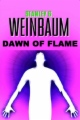Dawn of Flame book cover