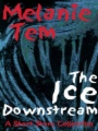 Ice Downstream book cover