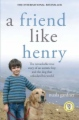 A Friend Like Henry book cover