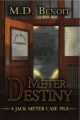 Meter Destiny book cover