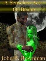 A Senseless Act of Beauty by John B. Rosenman book cover