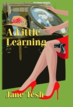 A Little Learning by Jane Tesh book cover