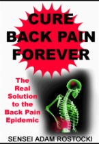 Cure Back Pain Forever by Sensei Adam Rostocki book cover