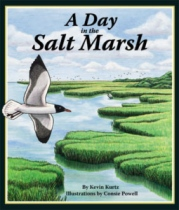 A Day In The Salt Marsh by Kevin Kurtz book cover