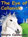 The Eye of Callanish book cover.