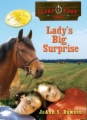 Lady's Big Surprise book cover